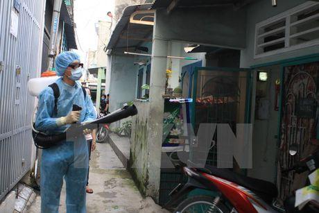 Ba Ria-Vung Tau phat hien ca nhiem Zika dau tien tren dia ban - Anh 1