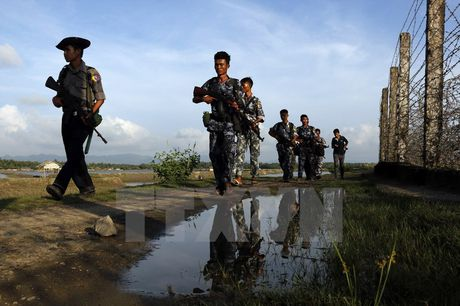 Quan doi Myanmar tieu diet 25 phan tu co vu trang o Rakhine - Anh 1