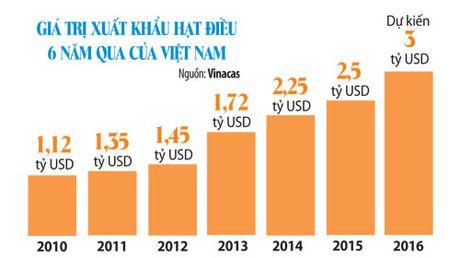 Hat dieu Viet Nam - so 1 ve xuat khau - Anh 2