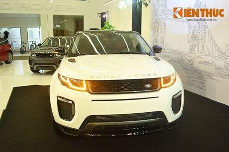 Land Rover Viet Nam no thue len den hon 700 ty dong - Anh 2