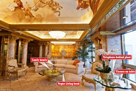 Noi that dat vang trong nha Tong thong My dac cu Donald Trump - Anh 6