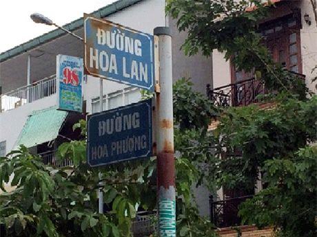 Cuoi suyt ngat voi muon kieu ten duong pho o Viet Nam - Anh 5