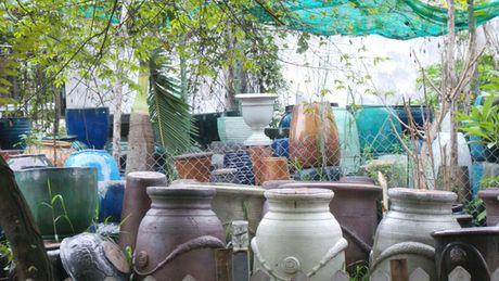 Thai phu nhiem Zika tai TP HCM da sinh con - Anh 2
