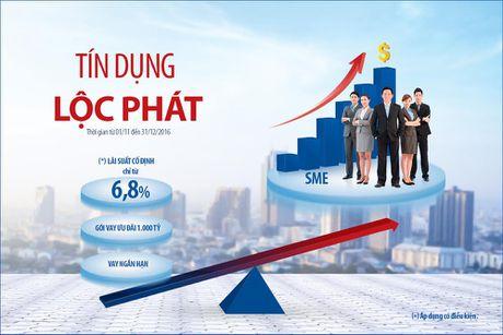 Ban Viet ap dung lai suat co dinh danh cho SME - Anh 2
