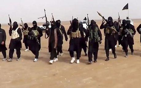 Tinh hinh Syria 14/11: Syria ra toi hau thu 24h cho quan khung bo o Aleppo - Anh 2