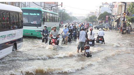 Trieu cuong len cao, TP Ho Chi Minh doi mat nguy co ngap ung - Anh 1