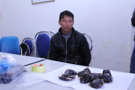 Bien phong Lai Chau: Khoi to vu van chuyen 1,2 kg thuoc phien - Anh 1