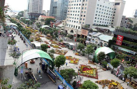 Duong hoa Nguyen Hue se mo tu 28 Tet - Anh 1