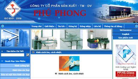 Phu Phong giai the va chuyen la ve co phieu PPG - Anh 1