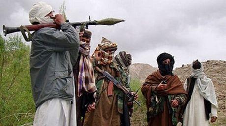 Afghanistan tieu diet 2 thu linh Taliban tai tinh Herat - Anh 1
