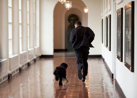 Nhung khoanh khac cuc ky dang yeu cua Tong thong My Barack Obama - Anh 7