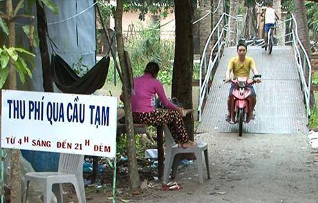 Khuat tat viec thu phi qua cau tam o Kien Giang - Anh 1