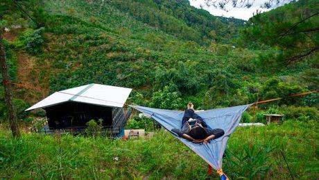 Check-in homestay hoang so giua rung 'khong ton mot xu' o Da Lat - Anh 10
