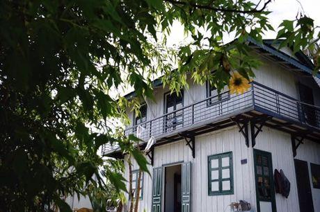 Check-in homestay hoang so giua rung 'khong ton mot xu' o Da Lat - Anh 1