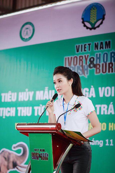 A hau Huyen My keu goi bao ve dong vat hoang da - Anh 2