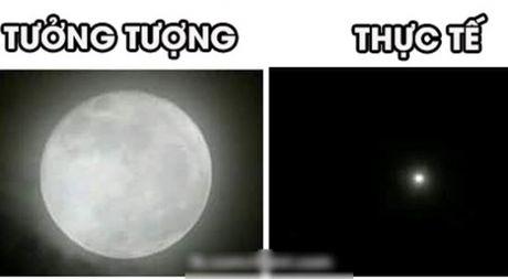 Dan mang Viet that vong tran tre vi thay sieu trang 'be ti' - Anh 1