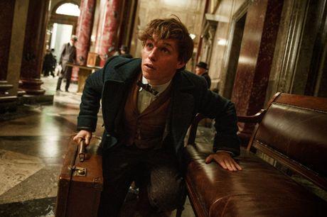 Fan mong cho moi tinh dong tinh cua Albus Dumbledore len man anh rong - Anh 3