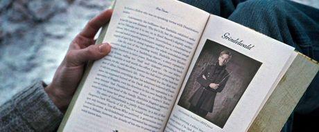 Fan mong cho moi tinh dong tinh cua Albus Dumbledore len man anh rong - Anh 6