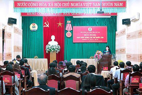 Ban Chap hanh LDLD tinh Phu Tho bau Pho chu tich moi - Anh 1