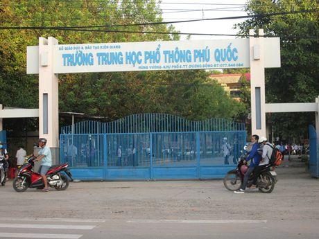 Phu Quoc: Mot co giao nguy kich vi bi ong dot - Anh 1