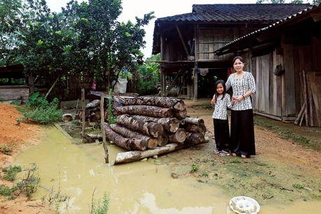 Viet Huong dan con gai vuot rung nui di tu thien  - Anh 2