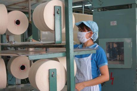 Soi polyester Viet Nam bi ap thue chong ban pha gia toi 72,56 % tai Tho Nhi Ky - Anh 1