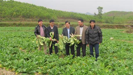 Quang Ninh cham giai ngan von - Anh 1