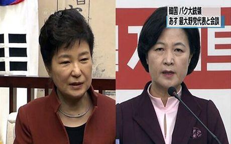 Han Quoc: Lanh dao dang doi lap se khong gap Tong thong Park Geun-hye - Anh 1