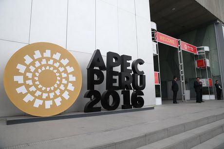 Hoi nghi cap cao APEC thuc day cac sang kien ket noi kinh te khu vuc - Anh 1