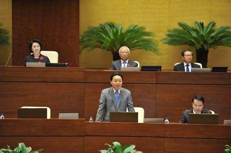 TOAN CANH: Bo truong Tran Hong Ha tra loi chat van - Anh 2