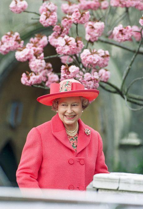Bo suu tap mu bat ly than cua Nu hoang Anh Elizabeth II - Anh 6