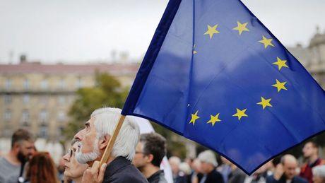 EU can danh thue hang nhap khau tu My neu Washington rut khoi Thoa thuan Paris - Anh 1