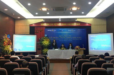 Baoviet Fund ra mat Quy Dau tu co phieu trien vong Bao Viet - Anh 2