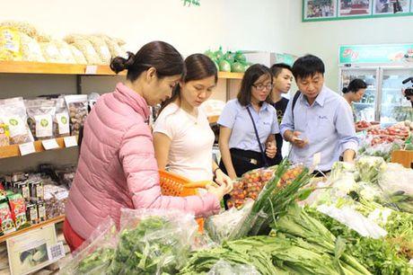 Nong san an toan rong duong ve Ha Noi - Anh 1