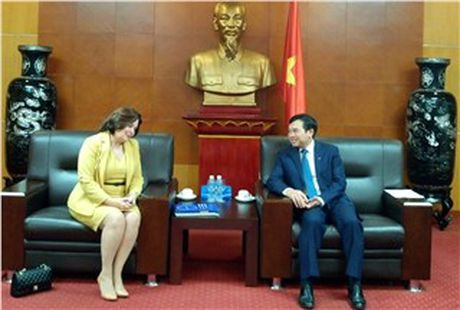 Viet Nam da thu hut duoc tren 3 ty USD - Anh 1