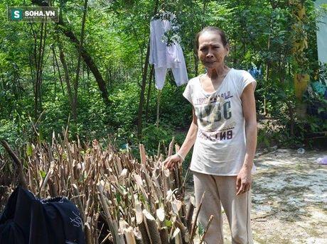 Quang Nam: Nguoi vo hon 30 nam khong ngu, chong so hai tron di - Anh 1