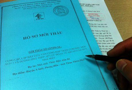 Tranh chap giua Hesco va Cong ty CP Thuy dien Truong Phu: Buoc hoan tra tien bao lanh du thau - Anh 1