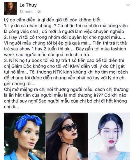 Nhieu chan dai to co ten trong 'danh sach den' cam dien Tuan le thoi trang quoc te Viet Nam - Anh 2