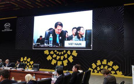 Viet Nam se tham gia va dong gop ngay cang tich cuc vao hop tac APEC - Anh 1