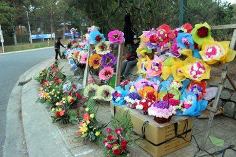Can ngay 20/11: Hoa Da Lat dong loat tang gia manh - Anh 2