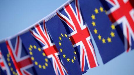 Nuoc Anh co the duy tri thuong mai tu do voi EU hau Brexit - Anh 1