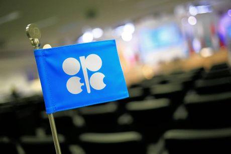 Cac nuoc OPEC nhat tri ve thoa thuan cat giam san luong dau mo - Anh 1