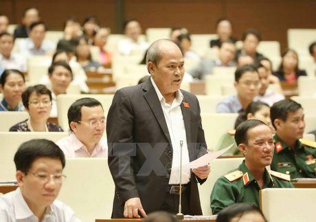 Dai bieu Quoc hoi truy van trach nhiem vu Trinh Xuan Thanh - Anh 1