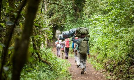 Ngam cung duong leo nui Kilimanjaro dep ngo ngang - Anh 4