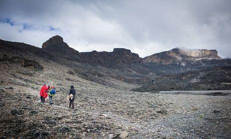 Ngam cung duong leo nui Kilimanjaro dep ngo ngang - Anh 6