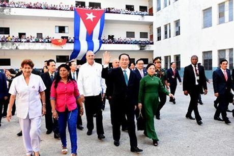 Chu tich nuoc Tran Dai Quang hoi dam voi Chu tich Cuba Raul Castro - Anh 3