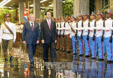 Chu tich Cuba Raul Castro don va hoi dam voi Chu tich nuoc Tran Dai Quang - Anh 2