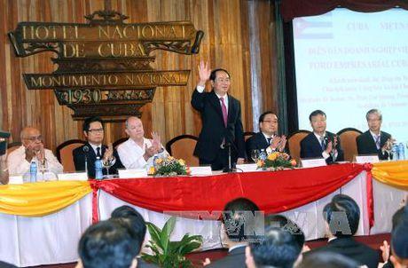 Chu tich nuoc du Dien dan doanh nghiep Viet Nam - Cuba - Anh 1