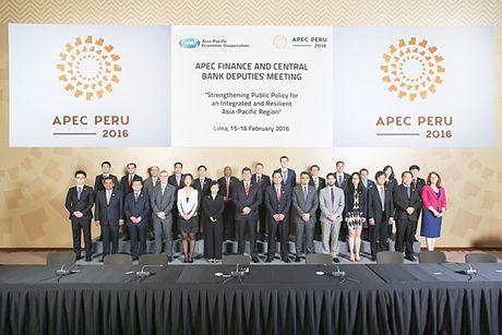 APEC 2016: Huong toi phat trien ben vung trong khu vuc - Anh 1