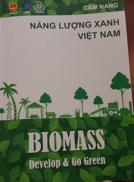 Khai thac nang luong sinh khoi o Viet Nam chua xung voi tiem nang - Anh 2